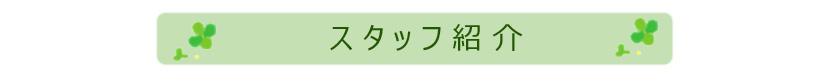 stf_top